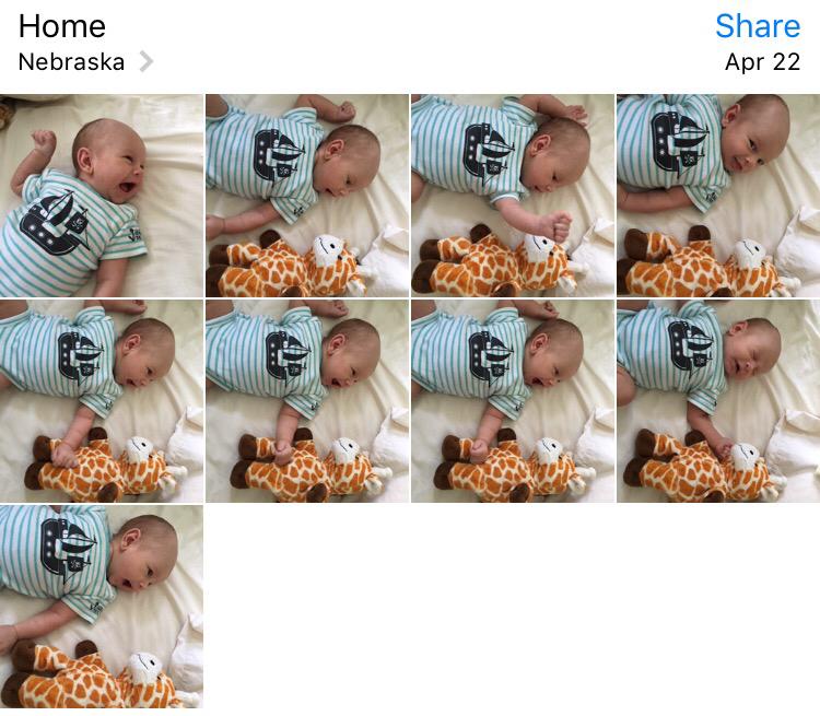 Pics of Charlie and giraffe pal incorrectly rotated